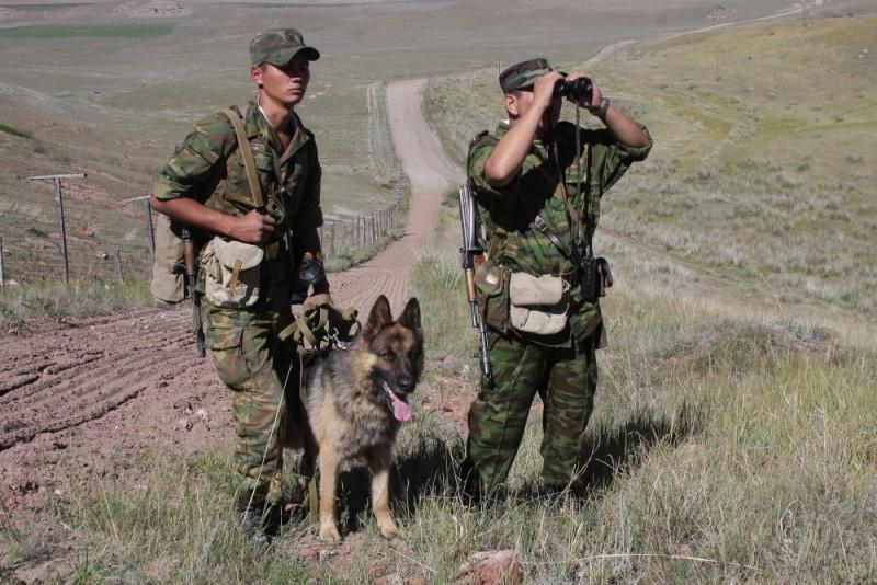 Пограничные войска картинки для детей, день