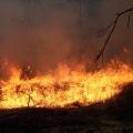 На павлодарских дачах вновь произошел пожар