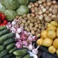 Президент поставил задачу снабдить Астану сельхозпродукцией