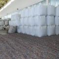 ВТуркестанской области открыли завод за $20млн