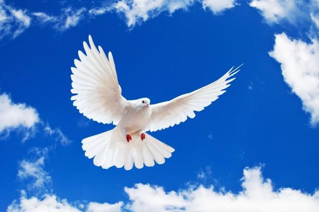 Казахстан обогнал всех соседей по индексу миролюбия