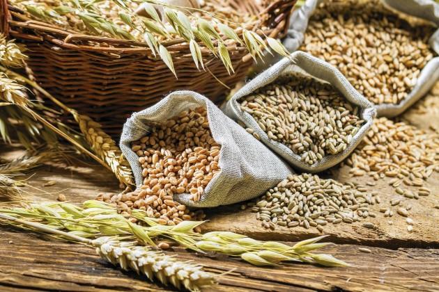 Госзакуп зерна переведут вэлектронный формат