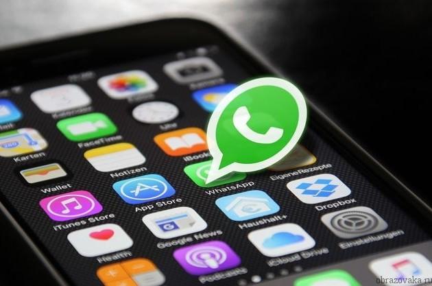 WhatsApp начал тестировать функцию исчезающих сообщений