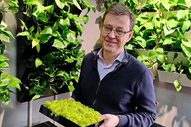 Как заработать на озеленении офисов?