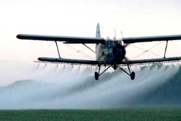 В Казахстане на борьбу с саранчой выделено 3,7 млрд тенге