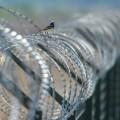 Венгрия отгородится от мигрантов забором