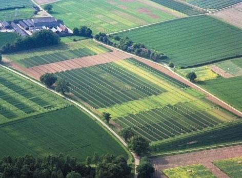 В частной собственности 1,5 млн. га земель