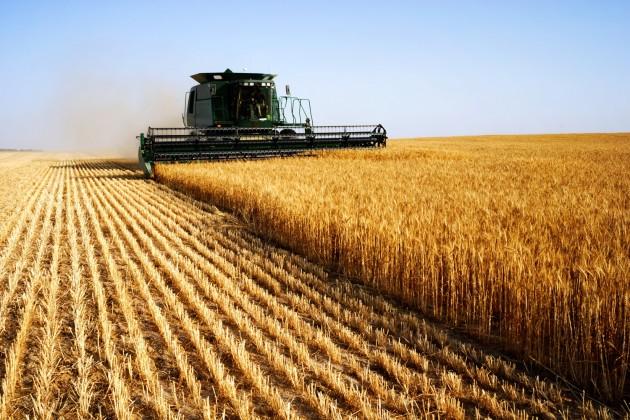 Рост инвестиций в сельское хозяйство затормозился