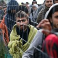 ООН: Число беженцев по всему миру достигло 70,8 млн