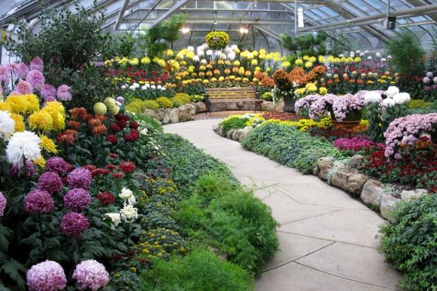 Через Хоргос в РК вывезены цветы на сумму $9 тыс.