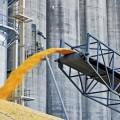 На севере РК построят завод по безотходной переработке зерна
