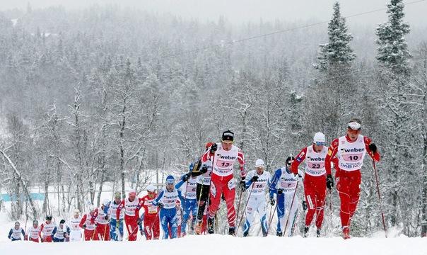 Алексей Полторанин стал восьмым на очередном этапе «Тур де ски»