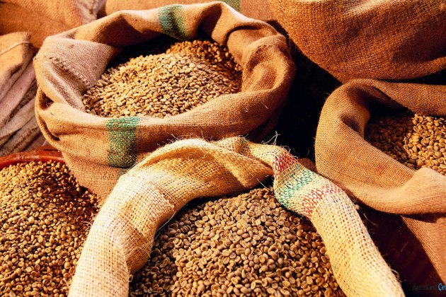 Пшеницу, муку илен экспортируют аграрии Карагандинской области