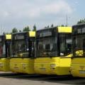Акимату Семея не разрешили открыть ТОО «Автобусный парк»