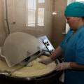 Свыше 900 предприятий работают в продовольственном поясе Астаны