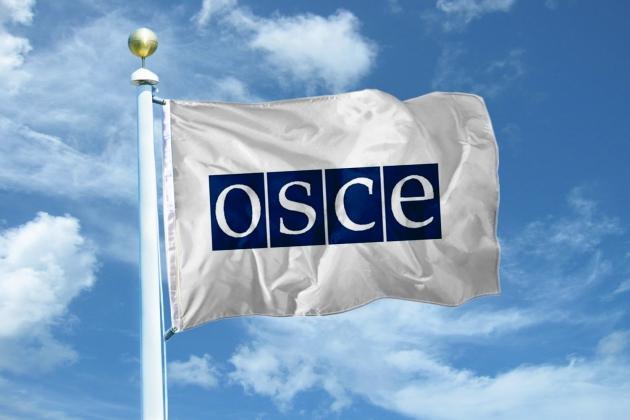 В ОБСЕ высоко оценили уровень подготовки Казахстана к выборам