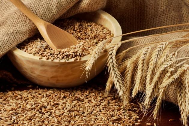 В 2015 году площадь зерновых культур составит 15,2 млн га