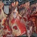 Монголия намерена поставлять в РК мясо и ковры