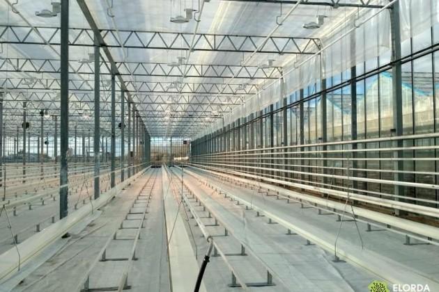 ВАстане построили высокотехнологичную теплицу