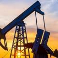 ОПЕК прогнозирует рост добычи нефти в России в 2019 году