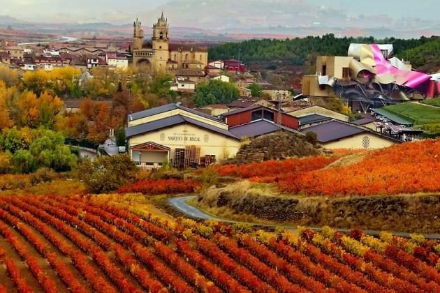 Испанские виноделы нарастили поставки в Великобританию