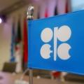 Индия просит ОПЕК уравнять цены нанефть для Азии иЗапада