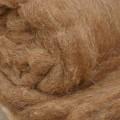 Перерабатывать верблюжью шерсть будут в Атырауской области