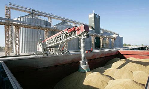 Азербайджан предпочитает казахстанскую пшеницу
