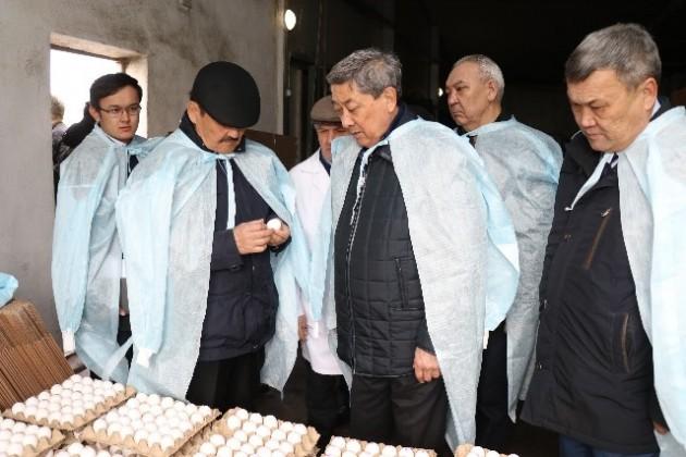 Депутаты ознакомились сработой птицефабрик Атырауской области
