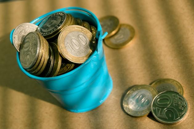 Сенат принял закон об увеличении финансирования из Нацфонда