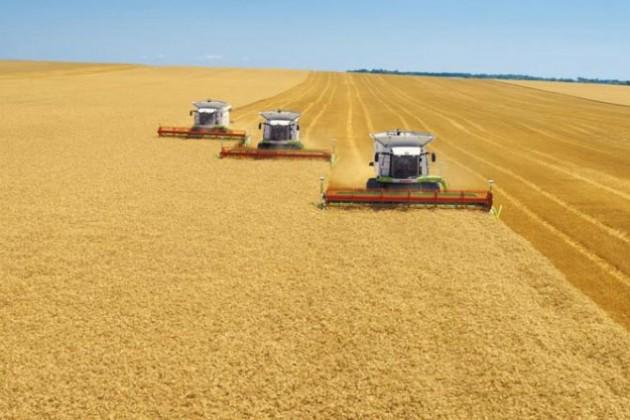 Сельское хозяйство поддержало товарное производство