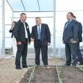 Новая теплица обеспечит жителей Астаны свежими овощами
