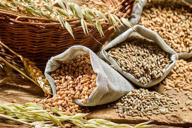 Запасы зерновых вмире снижаются