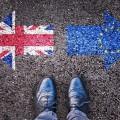 Британии предложили частичный таможенный союз сЕС