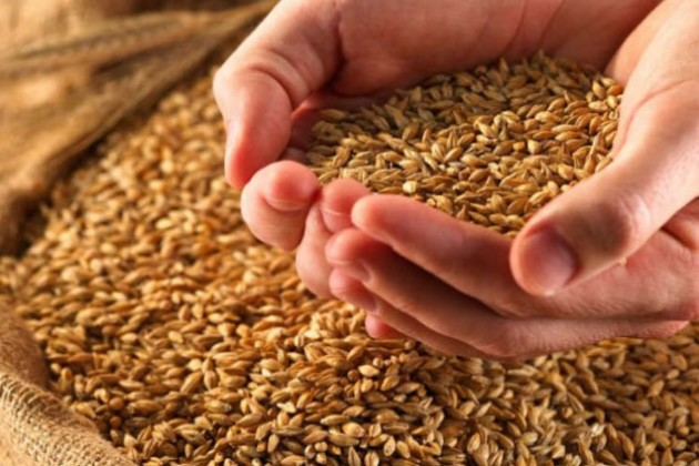 Урожай зерновых и бобовых культур уменьшился на 5,9%